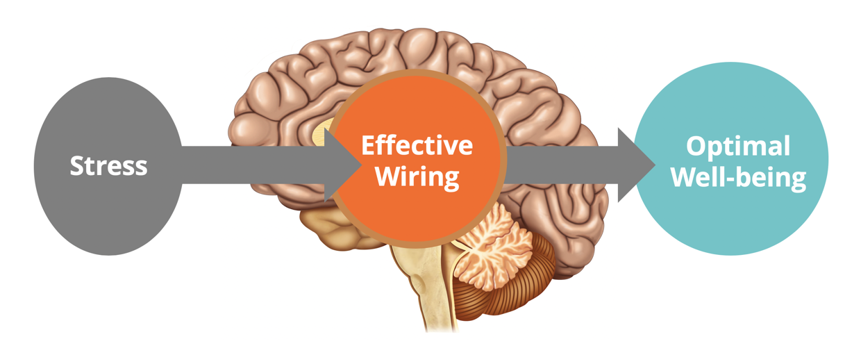 Effective wiring slide